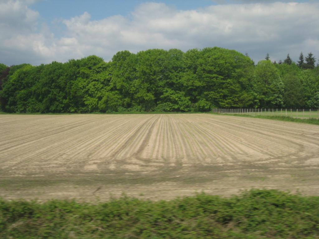 Regio Zutphen vanuit de trein, 17 mei 2012. Slootkanten, bermen, bosjes - alles is uitbundig groen. Behalve de akkers. We doen iets heel erg fout.