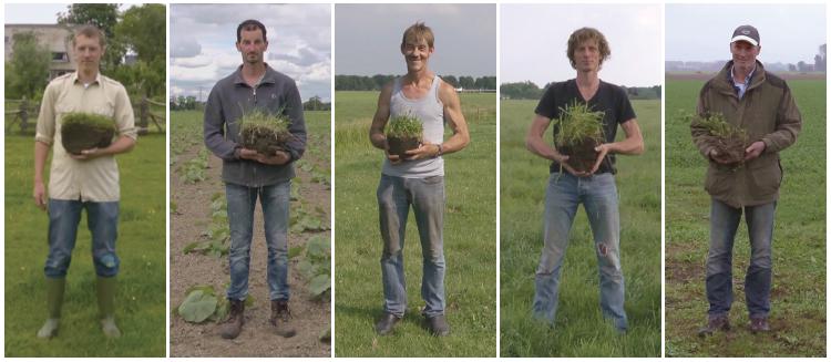 5 boeren